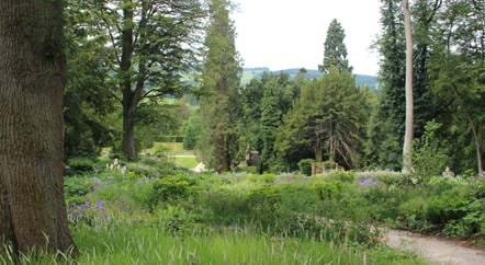 In the Chatsworth Garden blog series