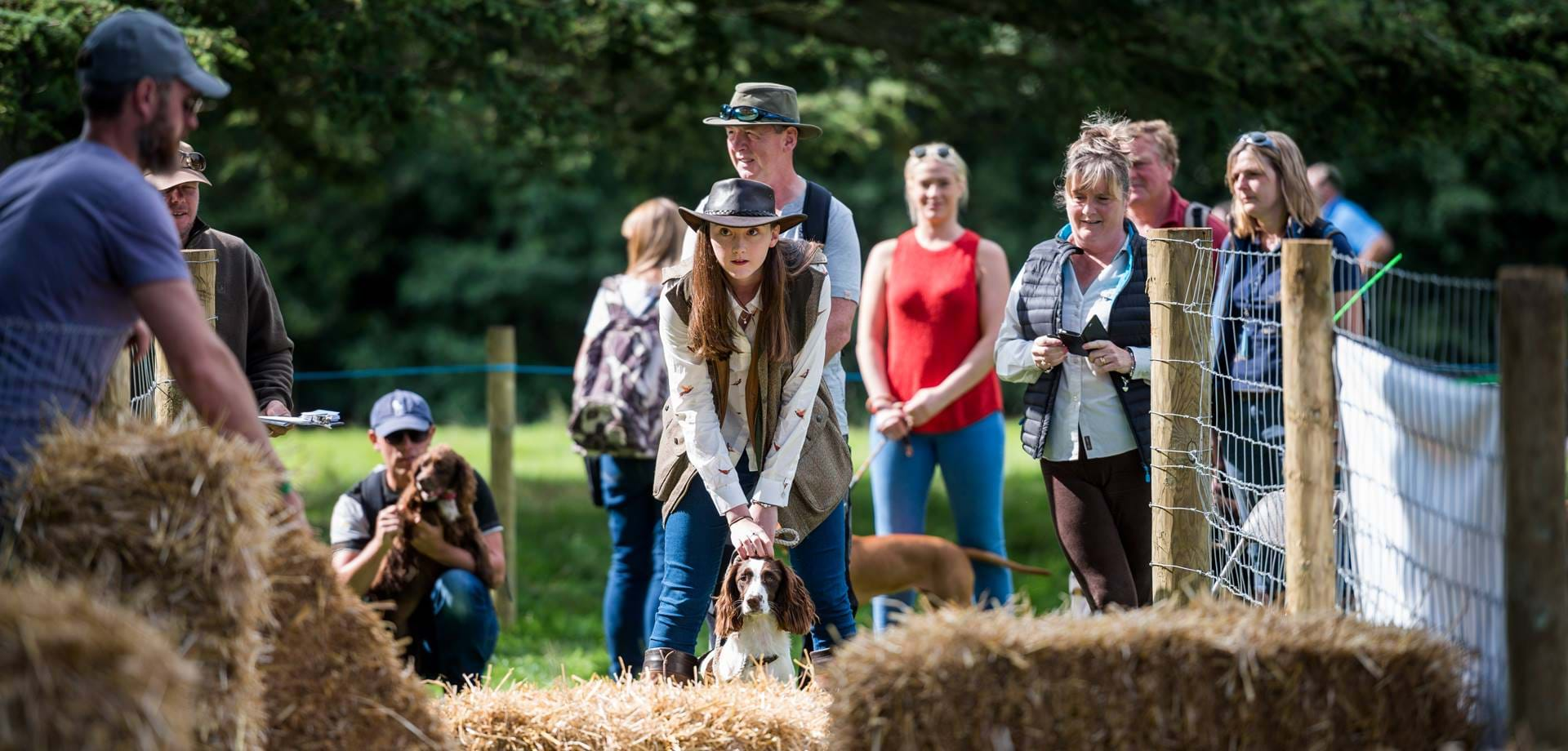 Dogs at the Chatsworth Country Fair